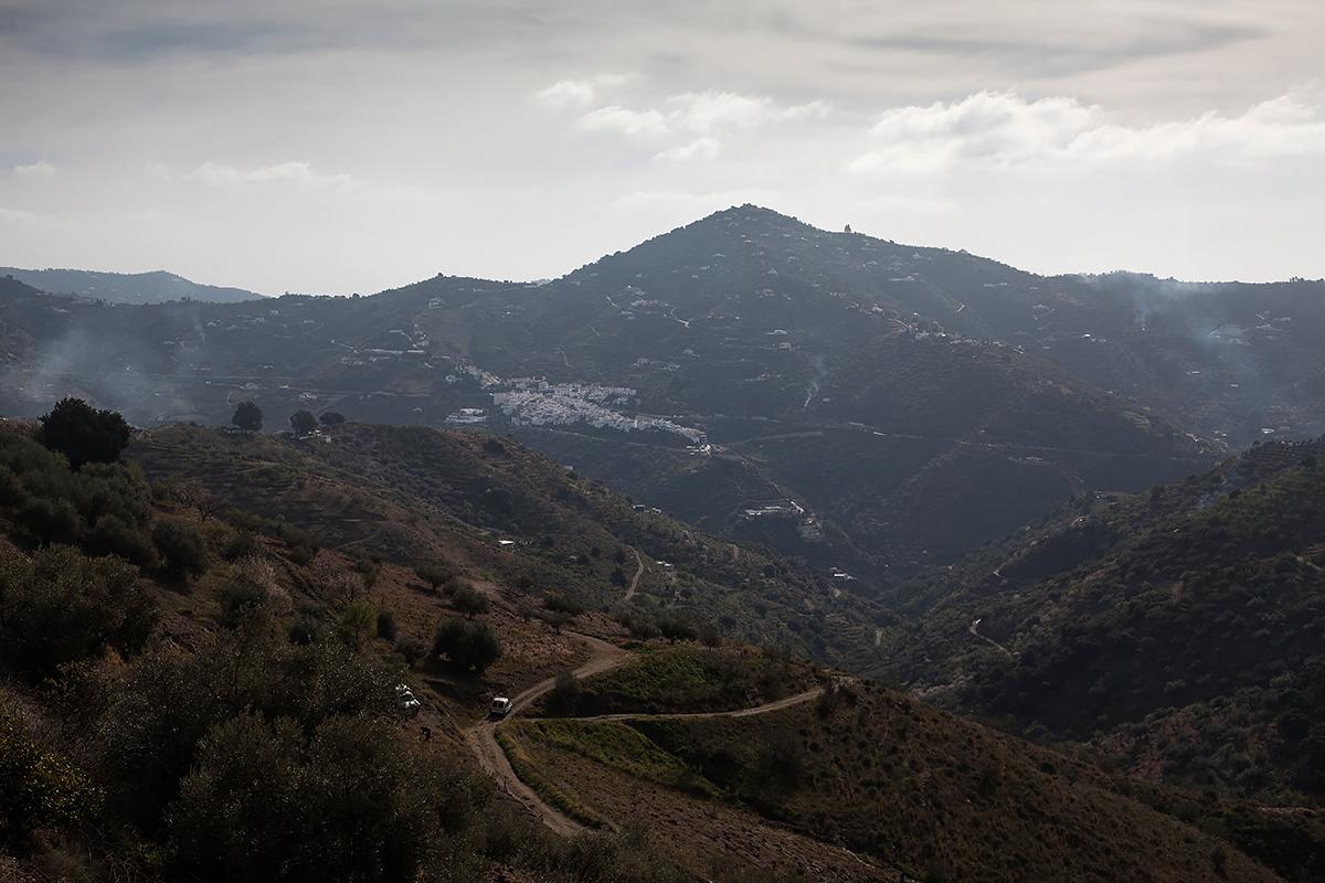 Andalucia-Campo-1