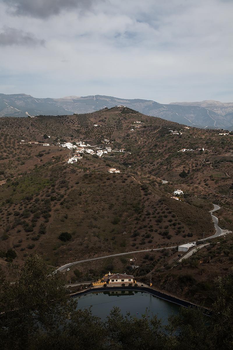 Andalucia-Campo-2
