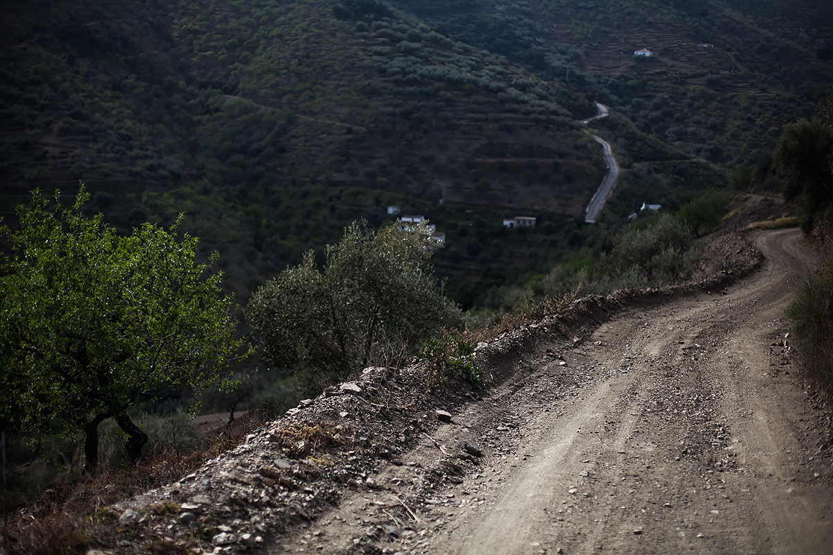 Andalucia-Campo-29