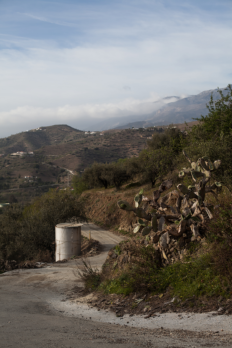 Andalucia-Campo-37