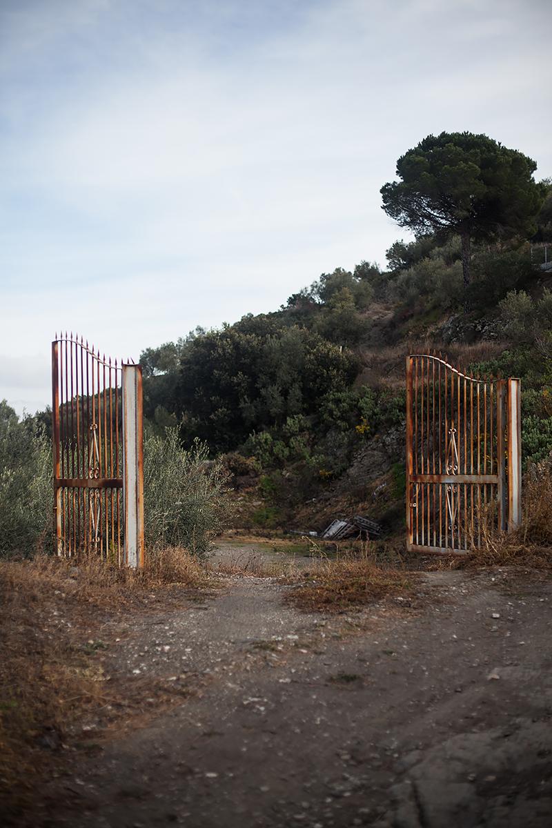 Andalucia-Campo-50