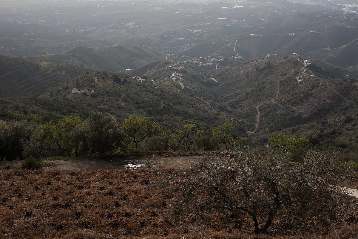 Andalucia-Campo-53