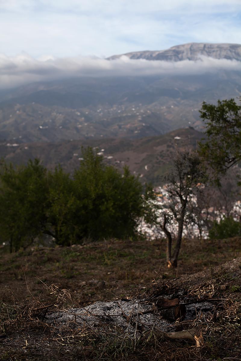 Andalucia-Campo-58